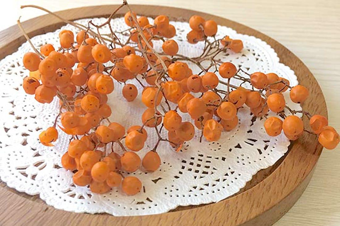 ペッパーベリー・オレンジ