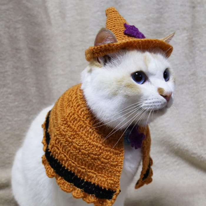 先折れ帽子(橙)