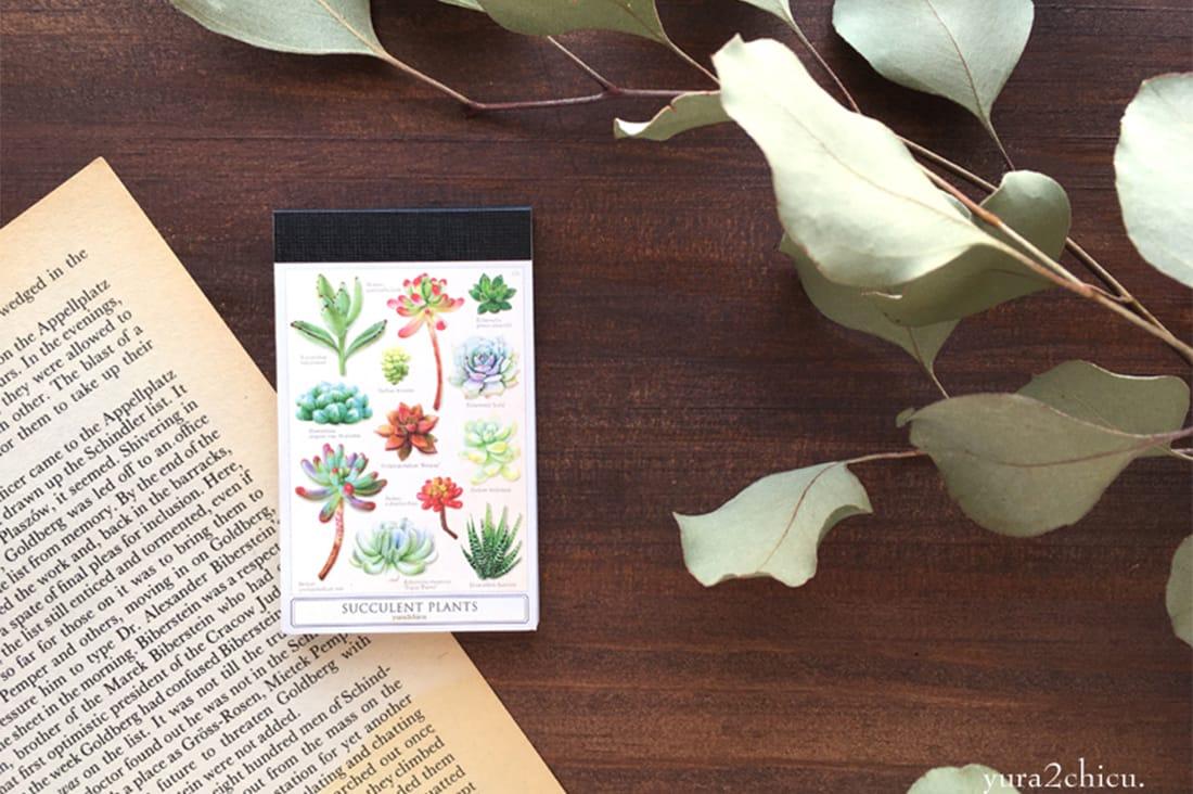 yura2chicuさんの多肉植物のメモ帳