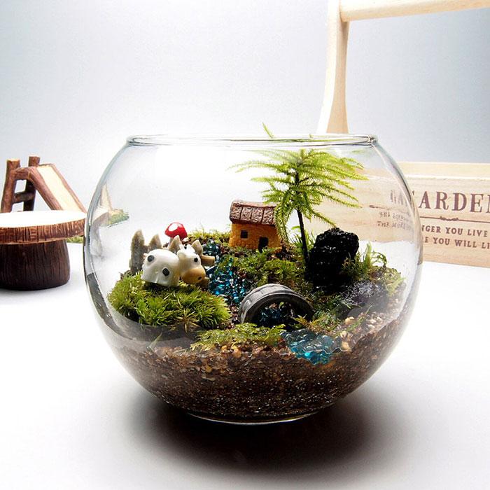 苔工房・津軽moss(青森・弘前)さんの苔テラリウム手作りキット一式