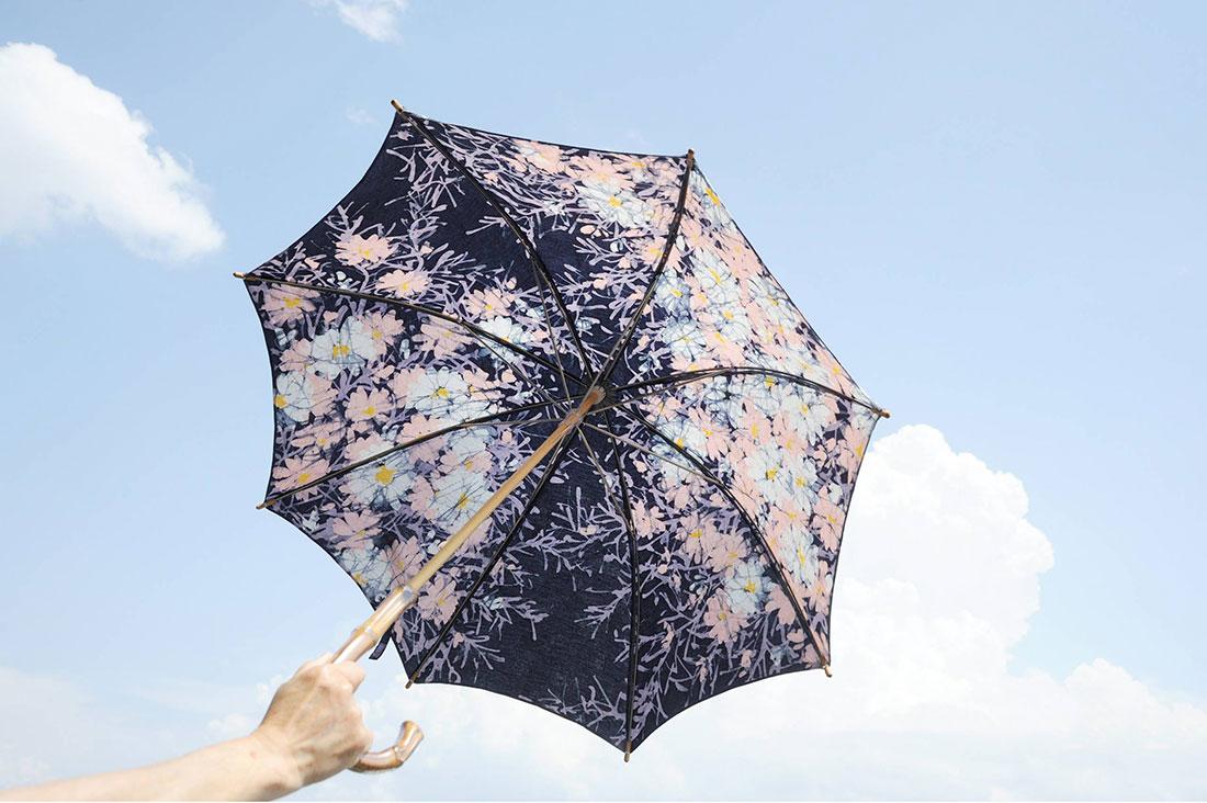 motoko66さんのコスモスの日傘