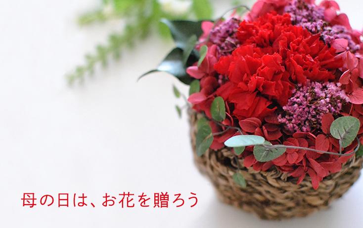 母の日は、お花を贈ろう