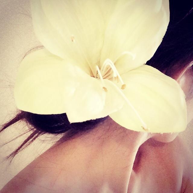 ornamental hairpin?amaryllis?全3色