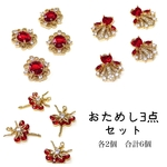 お試しセット(6pcs)Maiden design charm