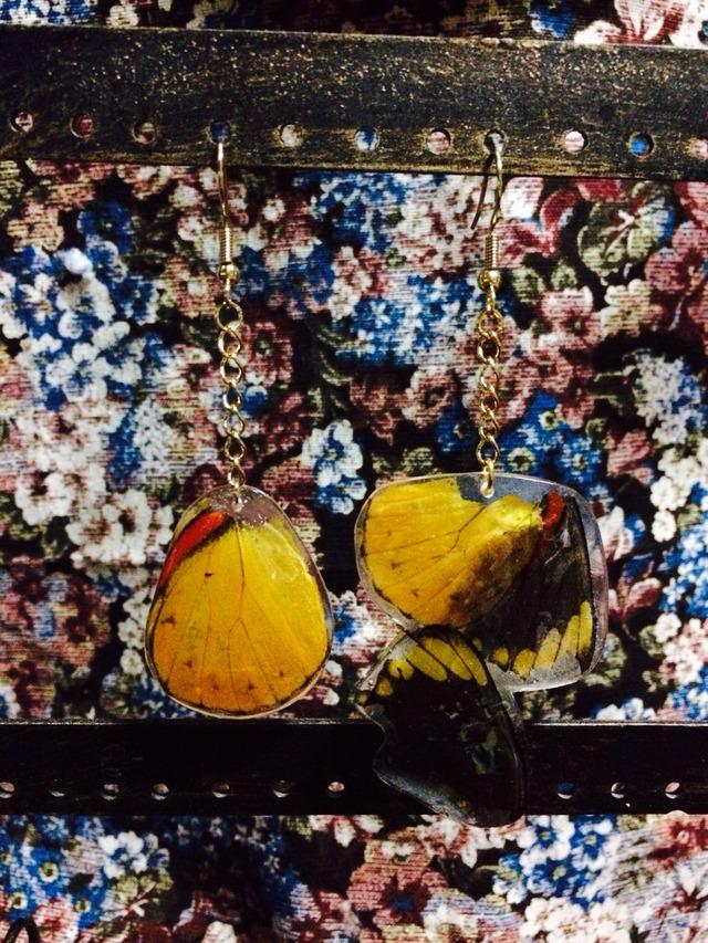 蝶の羽ピアス