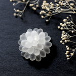 Brooch (clear/frost)