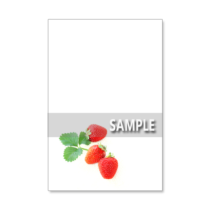 1024)お手紙特集   美味しい!を伝える  セット 5枚選べるポストカード