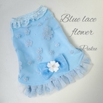 Blue lace flower[オーダー]