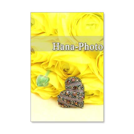 1031)セット 5枚選べるポストカード  「春の花 ラナンキュラスとアネモネ」