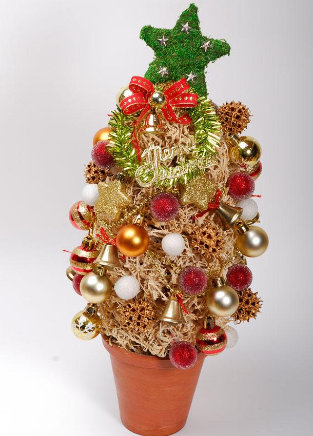 シーブッシュクリスマスツリー