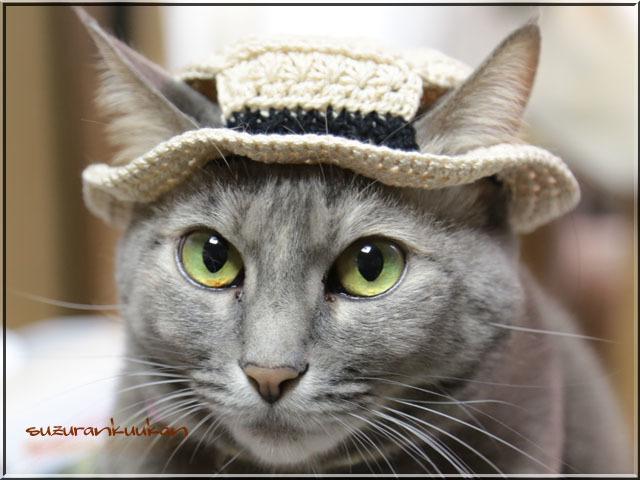 【猫用】編みカンカン帽3 2058<ラメ入り白茶色>