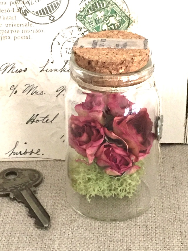 Bottle flower Rose Bouquet ��