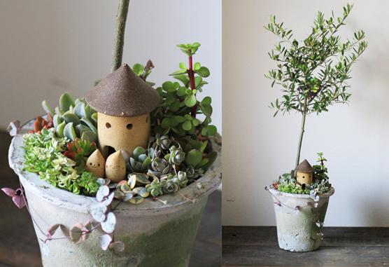 【予約販売】オリーブと多肉植物の箱庭風寄せ植え