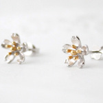 sakura pierce  (rhodium&gold plating)