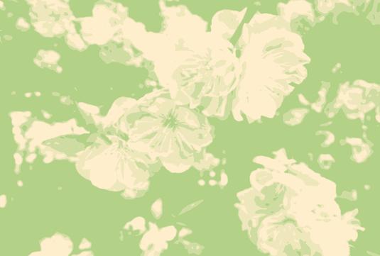 桜 ポストカード3枚セット