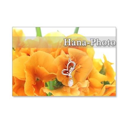 1047)可愛いオレンジ色のパンジー セット 5枚選べるポストカード