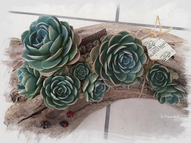 フェイク七福神と昆虫の流木アート