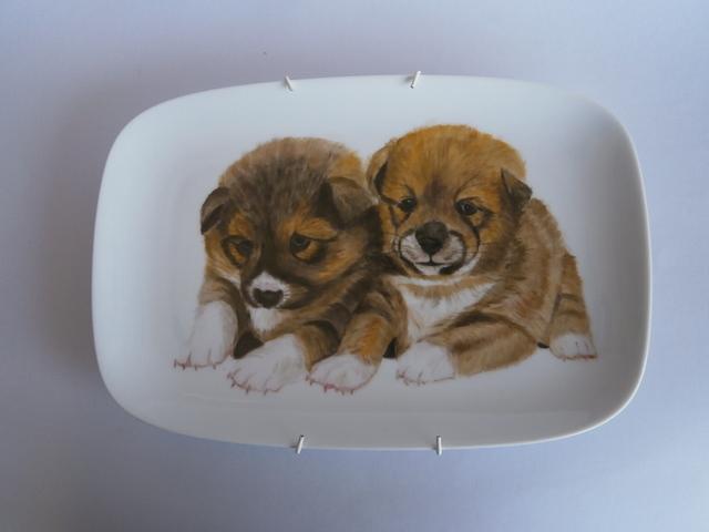 仔犬の絵皿