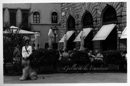 Signora Italiana(イタリアン・マダム)