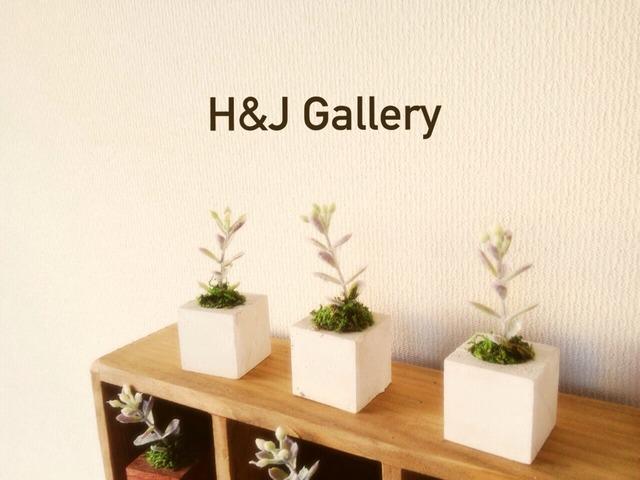 ☆小さな植木鉢*シルバーリーフ系フェイク白角