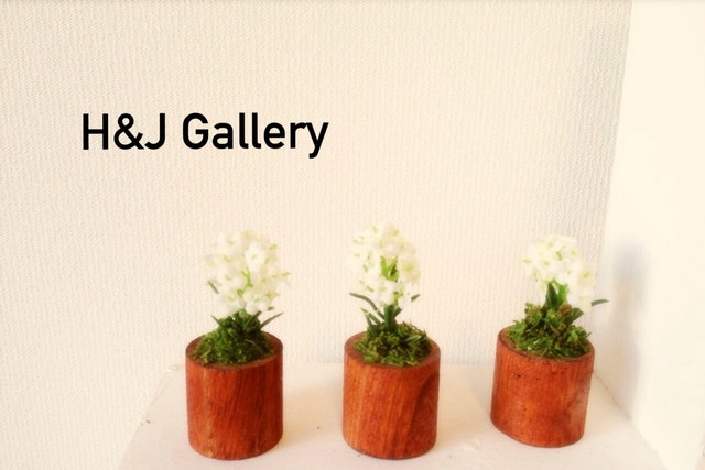 ☆小さな植木鉢*アリッサム フェイク丸