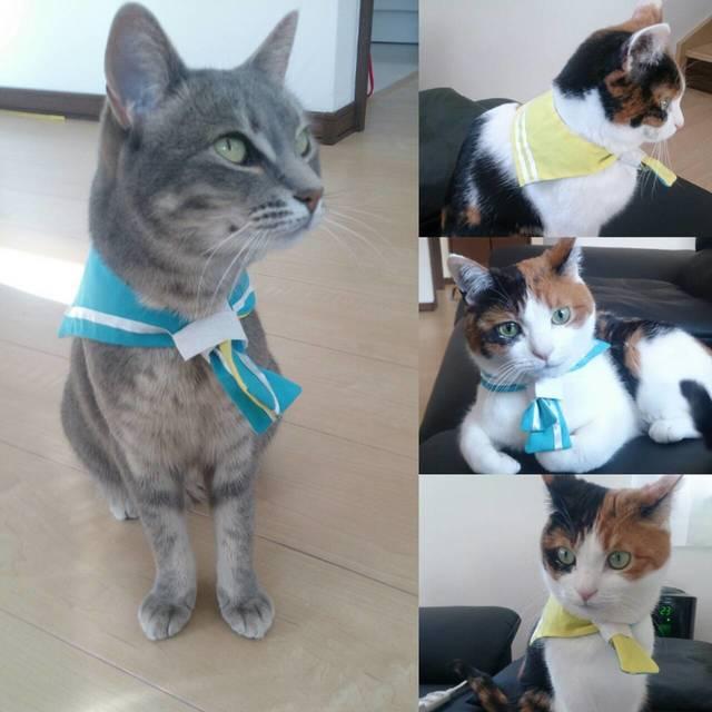【猫・小型犬用】黄×水色セーラーカラーでおしゃれに変身!
