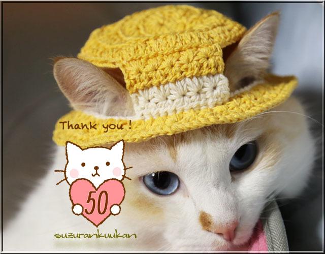 ★受注制作★【猫用】編みカンカン帽2<ミモザ>