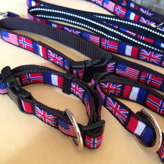 国旗柄 中型犬用首輪とリードのセット