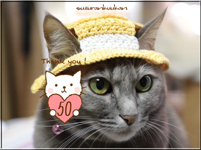 【猫用】編みカンカン帽3 2063<オレンジソルベ>