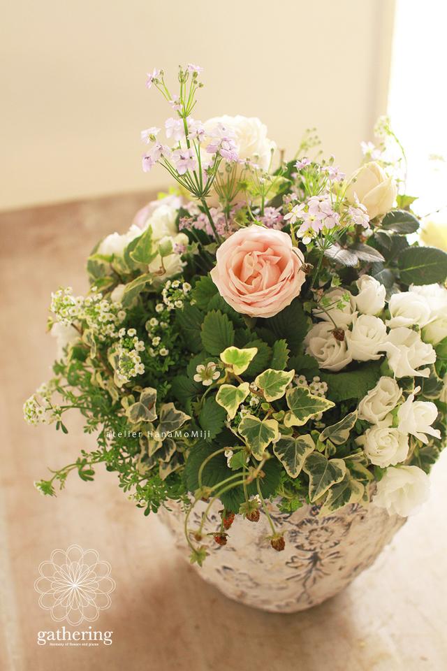 【1点もの】バラとジュリアンのギャザリング-花と植物寄せ植え-