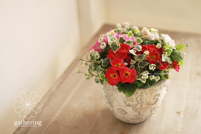 【1点もの】ジュリアンと苺のギャザリング-花と植物寄せ植え-
