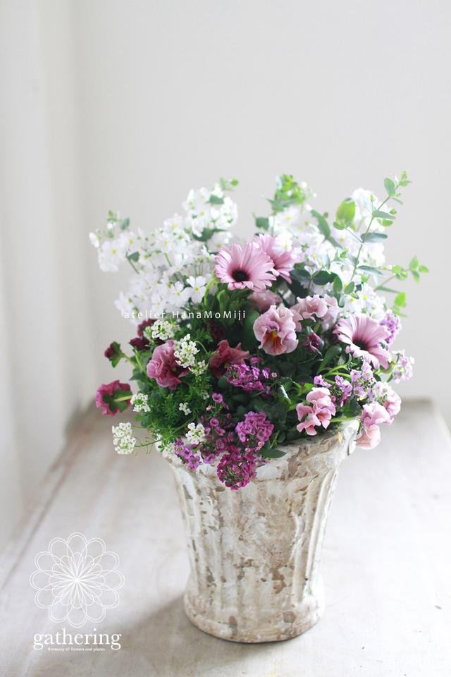 【1点もの】さくら草とふりふりパンジーギャザリング-花と植物寄せ植え-