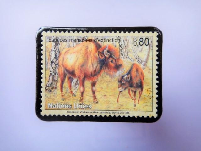 国連 野生保護 切手ブローチ 851