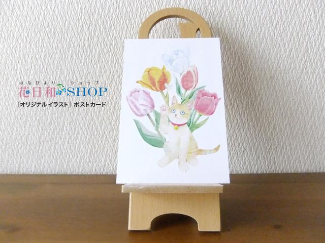 春いろ福にゃんこ|ポストカード 2枚セット