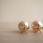 【outlet】14kgf starfish × pearl pierces
