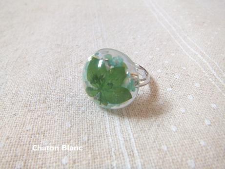 緑のリング