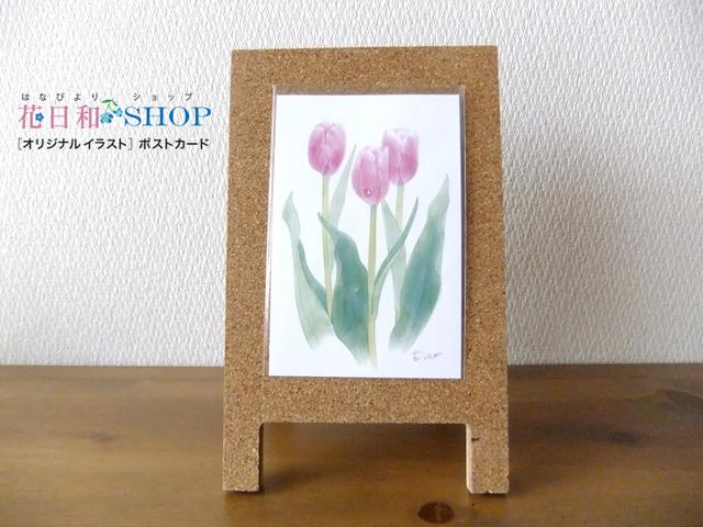 Tulip◆ピンクダイヤモンド |ポストカード 2枚セット