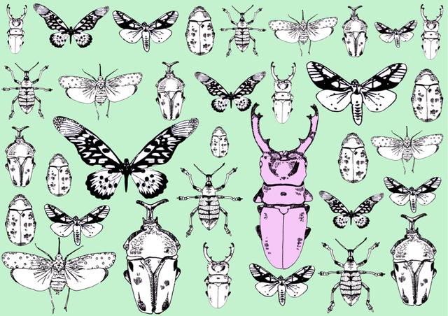 昆虫標本  スマホケース