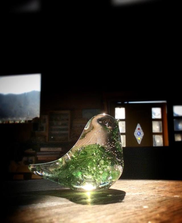 ライムグリーン×モスグリーンの小鳥 a