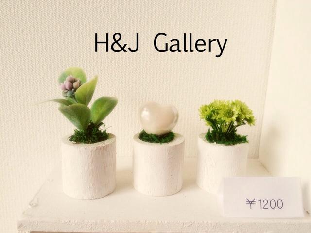 ☆小さな植木鉢*ホワイトバレンタイン 丸