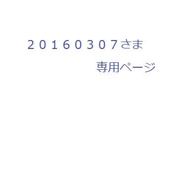 20160307������
