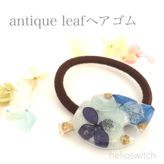 antique leaf�إ����� C