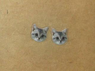 灰色猫のピアス