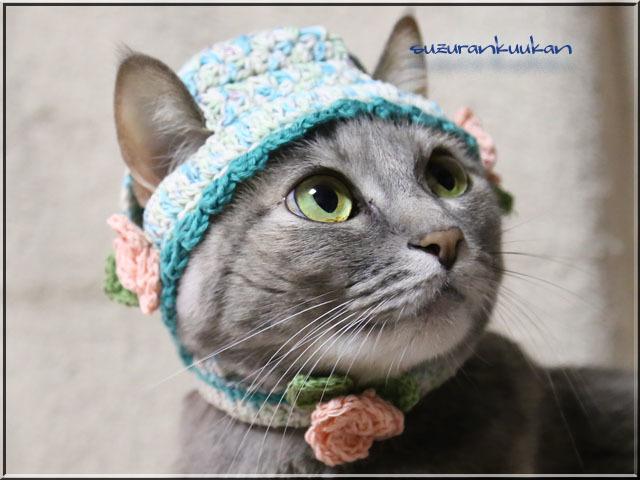 【猫用】帽子と首輪 バラ付きセット<グリーン系段染め>