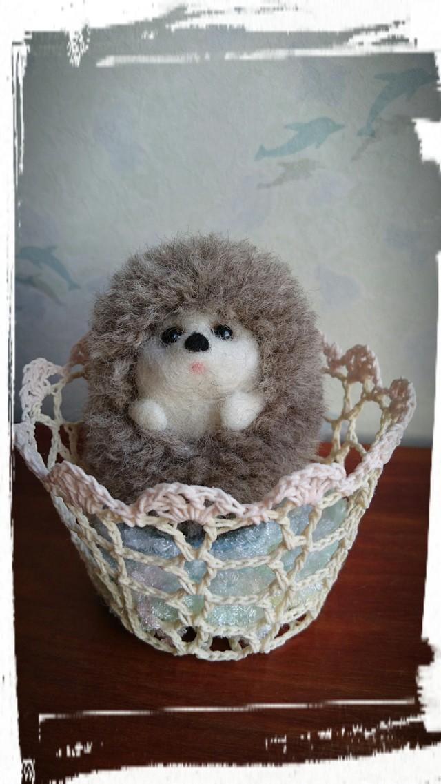 羊毛 ハリネズミ