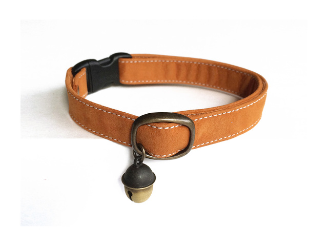 cat collar �� squirrel