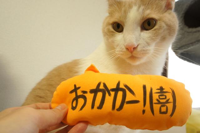 吹き出し猫キッカー(おかかー!)