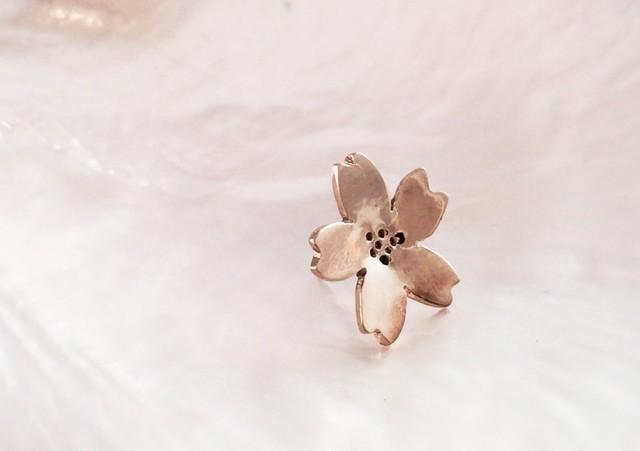 桜◇真鍮ピンバッジ?