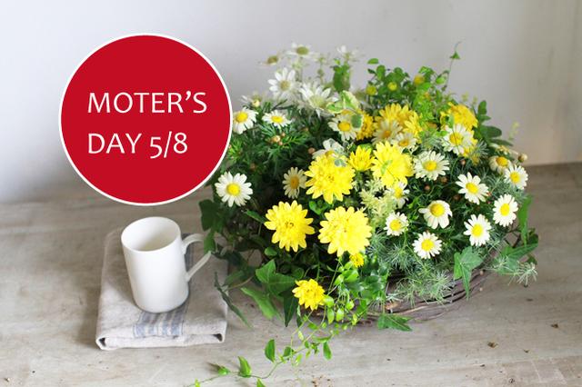 【L】母の日の寄せ植えギャザリング