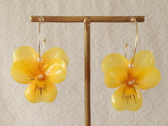 染め花を樹脂加工したビオラのフープピアス(M・イエロー)